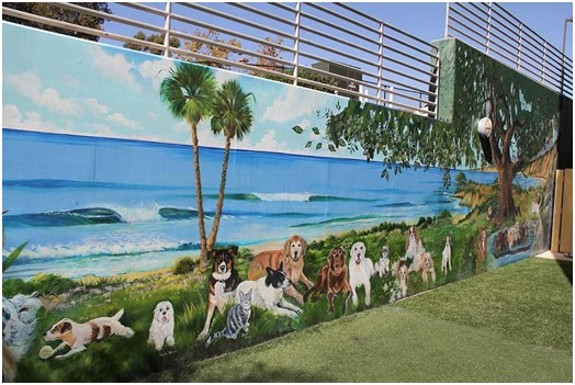 Animal Art-Dogs and Cats Art Mural at UC Davis Veterinary Specialty Hospital, San Diego, CA.<br />