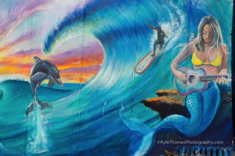 Dolphin-Ocean-Wave-Surfer-Mermaid-Mural-Painting-SanDiego-CA